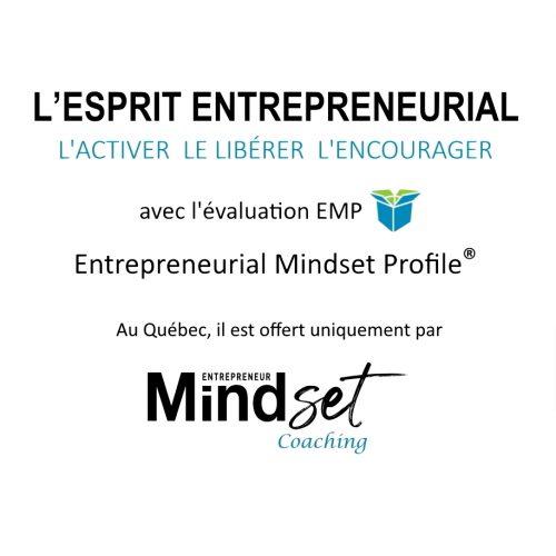 Mindset entrepreneur coaching emp